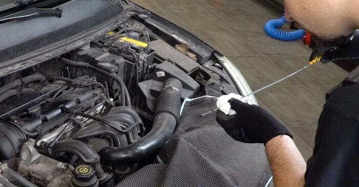 Kiek užtrunka keitimas: Ford Focus mk2 Sedanas 2012 Alyvos filtras - informatyvi PDF instrukcija