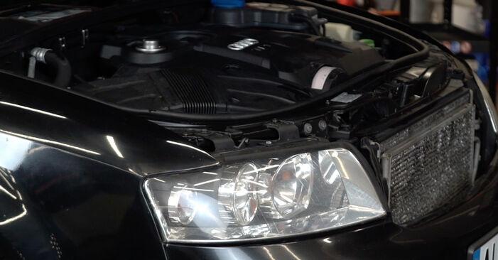 Wie Innenraumfilter Audi A4 B6 Avant 1.9 TDI 2001 tauschen - Kostenlose PDF- und Videoanleitungen