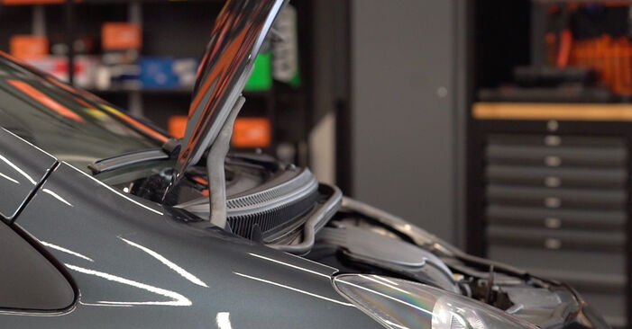 Wie Ölfilter Toyota Aygo AB1 1 2005 tauschen - Kostenlose PDF- und Videoanleitungen
