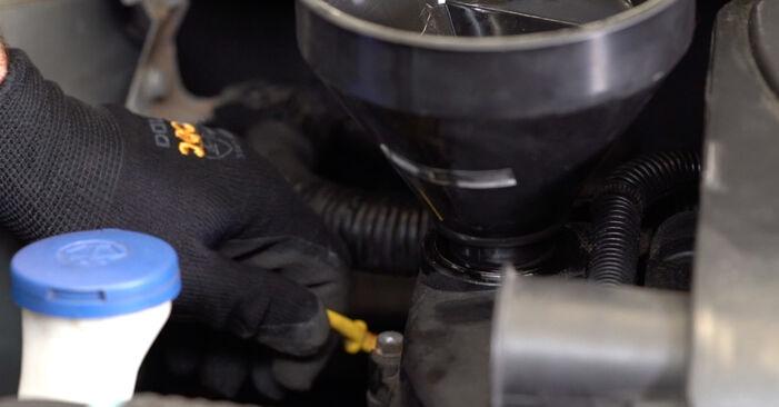 Ölfilter Toyota Aygo AB1 1.0 GPL (KGB10_) 2007 wechseln: Kostenlose Reparaturhandbücher