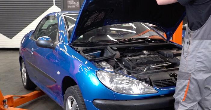 Wie Ölfilter Peugeot 206 CC 1.6 16V 2000 tauschen - Kostenlose PDF- und Videoanleitungen
