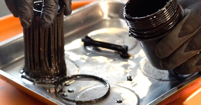 206 CC (2D) 1.6 16V 2002 2.0 S16 Ölfilter - Handbuch zum Wechsel und der Reparatur eigenständig
