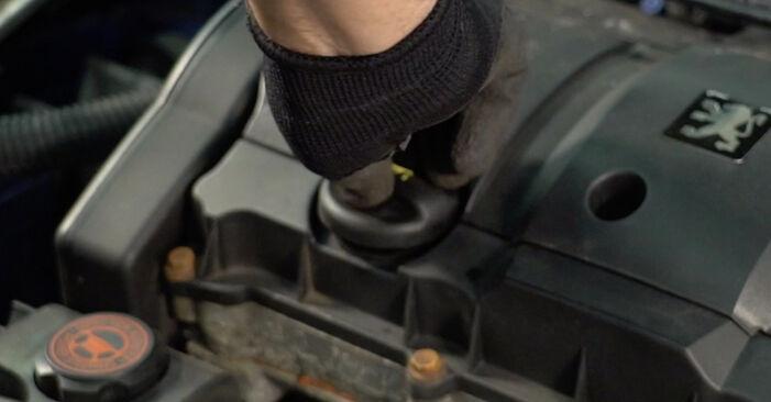 Ölfilter Ihres Peugeot 206 CC 1.6 16V 2008 selbst Wechsel - Gratis Tutorial