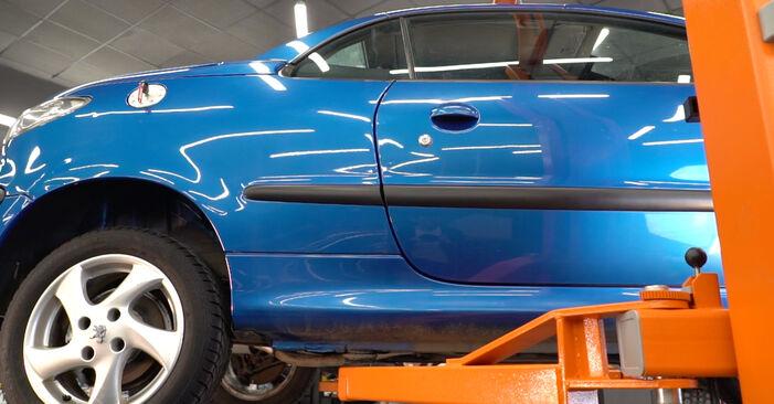 206 CC (2D) 1.6 16V 2009 2.0 S16 Kraftstofffilter - Handbuch zum Wechsel und der Reparatur eigenständig