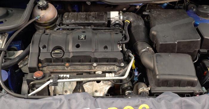 Schritt-für-Schritt-Anleitung zum selbstständigen Wechsel von Peugeot 206 cc 2d 2011 1.6 16V Kraftstofffilter