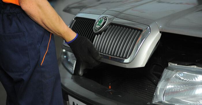 Trinn-for-trinn anbefalinger for hvordan du kan bytte Skoda Octavia 1u 2009 2.0 Fjærbenslager selv