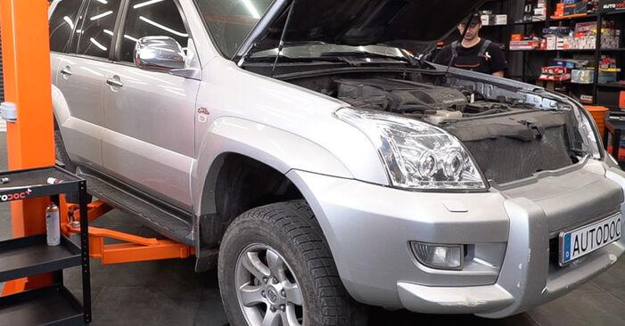 Spurstangenkopf Toyota Prado J120 3.0 D 2004 wechseln: Kostenlose Reparaturhandbücher
