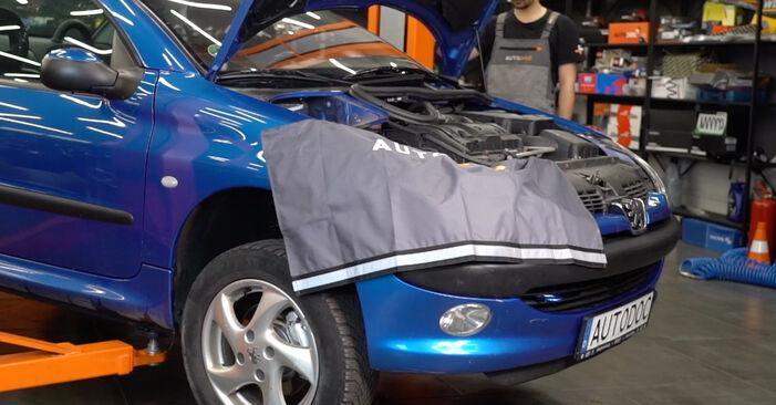 Wymiana Peugeot 206 cc 2d 2.0 S16 2002 Końcówka drążka kierowniczego poprzecznego: darmowe instrukcje warsztatowe