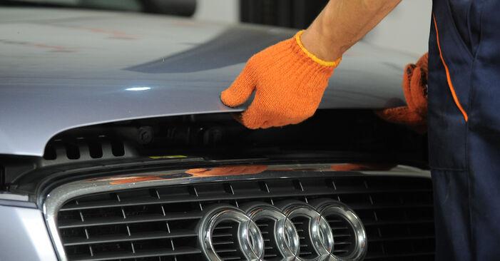 Wie Innenraumfilter Audi A4 B7 Avant 2.0 TDI 2004 tauschen - Kostenlose PDF- und Videoanleitungen