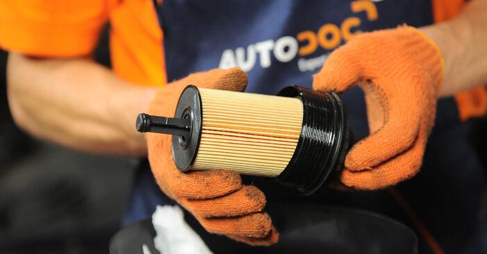 Ölfilter Audi A4 B7 Avant 1.9 TDI 2006 wechseln: Kostenlose Reparaturhandbücher
