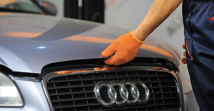 Ölfilter Ihres Audi A4 B7 Avant 2.0 TDI 16V 2007 selbst Wechsel - Gratis Tutorial