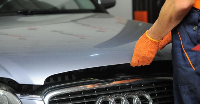 Så lång tid tar det att byta Bromsskivor på Audi A4 b7 2002 – informativ PDF-manual