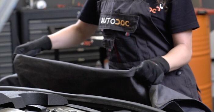 Zweckdienliche Tipps zum Austausch von Domlager beim AUDI A4 Avant (8ED, B7) 1.9 TDI 2008