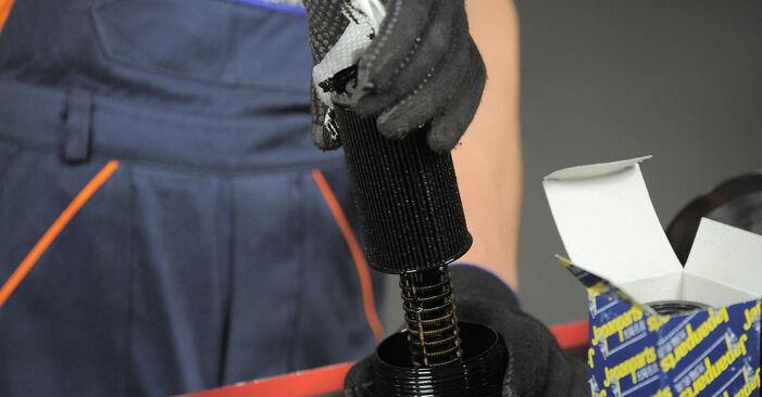 Schritt-für-Schritt-Anleitung zum selbstständigen Wechsel von Honda CR-V II 2002 2.4 Ölfilter
