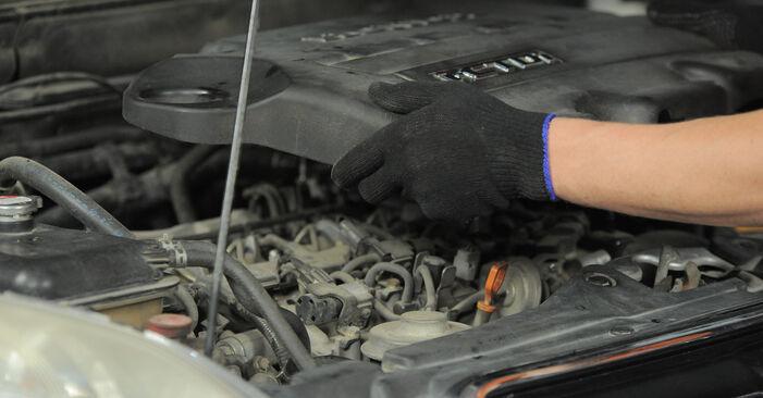 Luftfilter beim HONDA CR-V 2.4 4WD 2002 selber erneuern - DIY-Manual