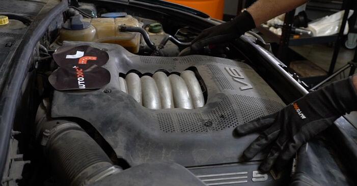 Pasikeiskite AUDI A6 Avant (4B5, C5) 2.4 2002 V formos rumbuotas diržas patys - internetinė instrukcija