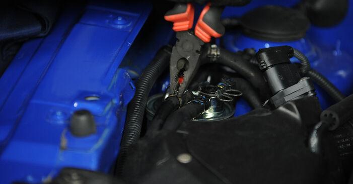 Austauschen Anleitung Kraftstofffilter am Lupo 3L 2000 1.2 TDI 3L selbst