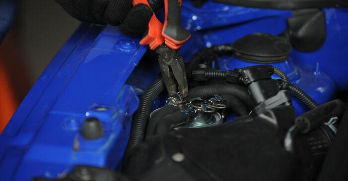 Kraftstofffilter Lupo 3L 1.4 2000 wechseln: Kostenlose Reparaturhandbücher