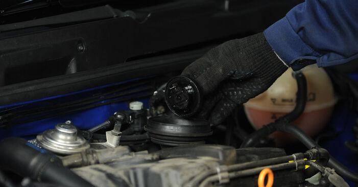Wie schwer ist es, selbst zu reparieren: Ölfilter Lupo 3L 1.6 GTI 2004 Tausch - Downloaden Sie sich illustrierte Anleitungen