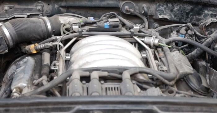 Zündkerzen am AUDI A6 Avant (4B5, C5) S6 4.2 quattro 2002 wechseln – Laden Sie sich PDF-Handbücher und Videoanleitungen herunter