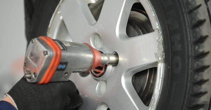 Wechseln Federn am VW Lupo (6X1, 6E1) 1.4 16V 2001 selber