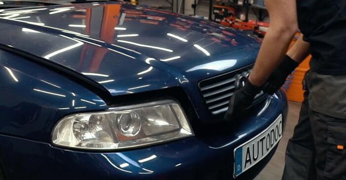 Wie Keilrippenriemen Audi A4 B5 1.6 1994 tauschen - Kostenlose PDF- und Videoanleitungen