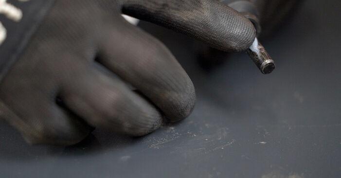 Cómo reemplazar Pinzas de Freno en un VW Caddy III Familiar (2KB, 2KJ, 2CB, 2CJ) 1.9 TDI 2005 - manuales paso a paso y guías en video