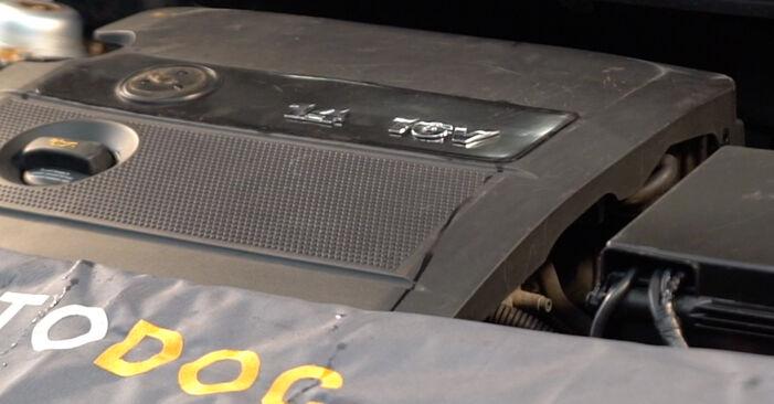 Bytte POLO (9N_) 1.9 TDI 2012 Tennplugger – gjør det selv med vår veiledning