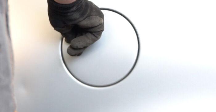 Zweckdienliche Tipps zum Austausch von Kraftstofffilter beim VW POLO (9N_) 1.4 TDI 2003