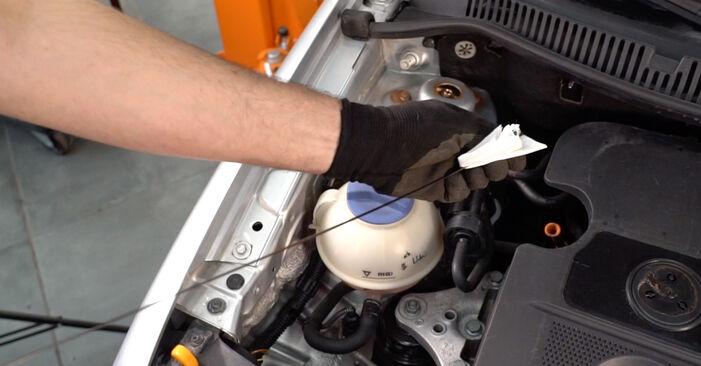 À quel point est-il difficile de le faire soi-même : télécharger le guide illustré pour le changement de Filtre à Huile sur VW Polo 9n 1.4 16V 2007