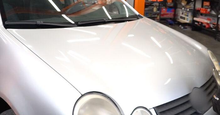 Combien de temps dure le remplacement : Filtre à Huile sur VW Polo 9n 2009 - manuel PDF informatif