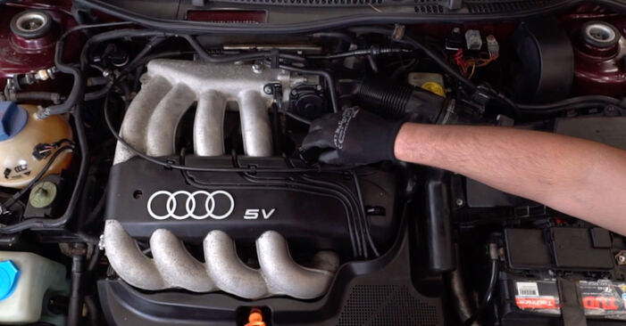 Recomendaciones paso a paso para la sustitución por su cuenta Audi A3 8L 2001 1.8 Filtro de Aceite
