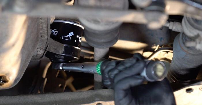 Schritt-für-Schritt-Anleitung zum selbstständigen Wechsel von Renault Kangoo kc01 2010 1.2 16V Ölfilter