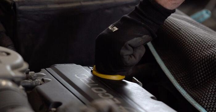 Byta Opel Astra g f48 1.6 (F08, F48) 2000 Oljefilter: gratis verkstadsmanualer