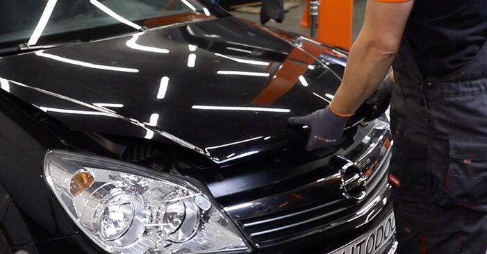 BMW 3 SERIES 318d 2.0 Stoßdämpfer ausbauen: Anweisungen und Video-Tutorials online