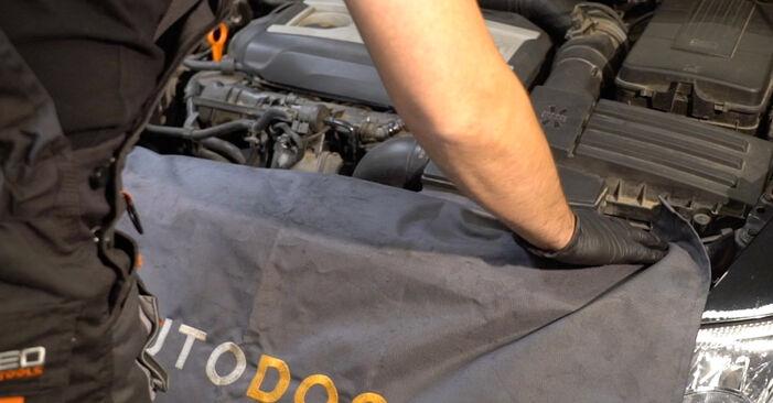 Πώς να αντικαταστήσετε BMW X5 (E53) 3.0 d 2001 Φίλτρο καυσίμων - εγχειρίδια βήμα προς βήμα και οδηγοί βίντεο