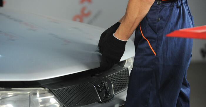 Πόσο δύσκολο είναι να το κάνετε μόνος σας: Φίλτρο καυσίμων αντικατάσταση σε BMW E53 3.0 i 2006 - κατεβάστε τον εικονογραφημένο οδηγό