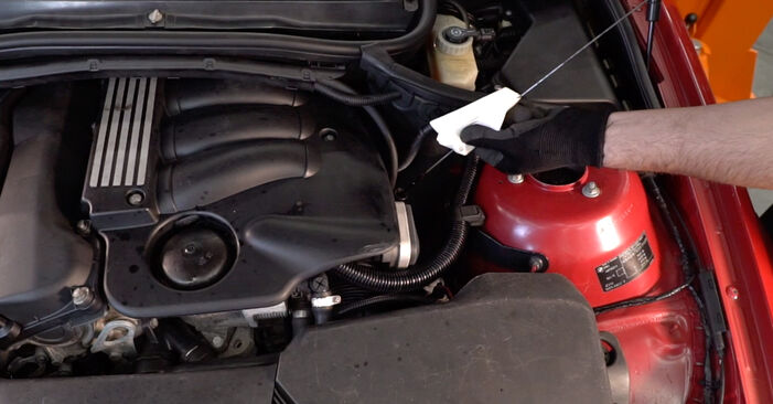 Schritt-für-Schritt-Anleitung zum selbstständigen Wechsel von BMW e46 Cabrio 2005 323Ci 2.5 Ölfilter