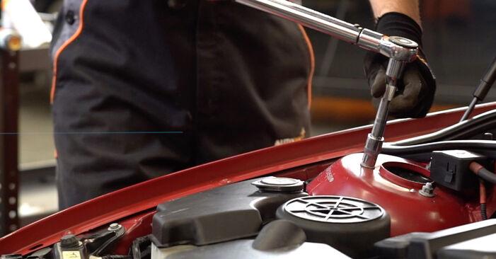 BMW 3 SERIES 320Ci 2.2 Federn ausbauen: Anweisungen und Video-Tutorials online