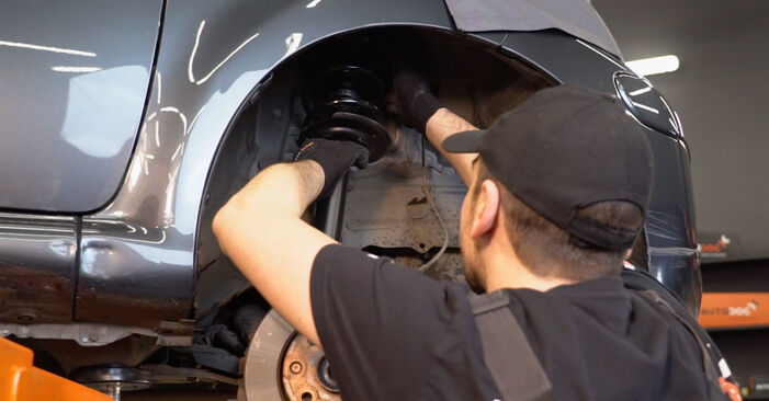 Schritt-für-Schritt-Anleitung zum selbstständigen Wechsel von Toyota Aygo AB1 2008 1.4 HDi Federn