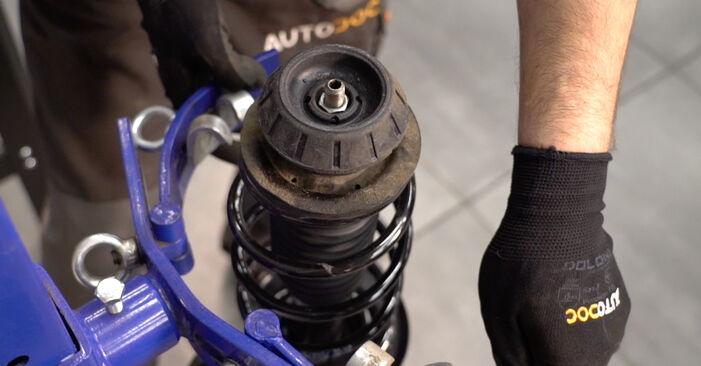 Trinn-for-trinn anbefalinger for hvordan du kan bytte Toyota Aygo ab1 2008 1.4 HDi Støtdemper selv