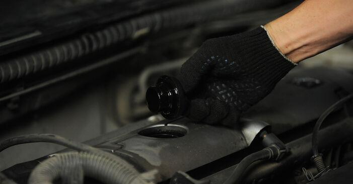 Peugeot 406 Sedanas 1.8 16V 1997 Alyvos filtras keitimas: nemokamos remonto instrukcijos