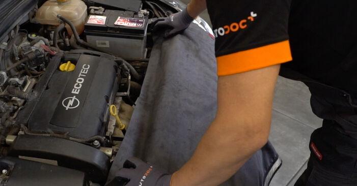 Wie Stoßdämpfer OPEL Astra H Limousine (A04) 1.7 CDTi (L69) 2008 austauschen - Schrittweise Handbücher und Videoanleitungen