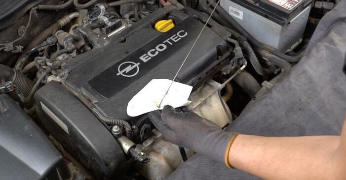 Schritt-für-Schritt-Anleitung zum selbstständigen Wechsel von Opel Astra H Limousine 2012 1.7 CDTI (L69) Ölfilter