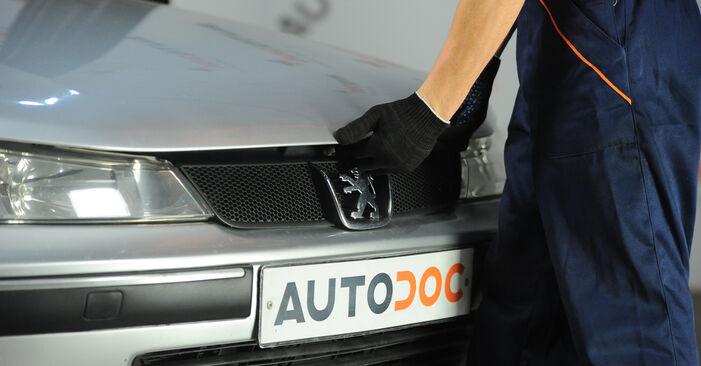 Wie Bremsscheiben Peugeot 406 Limousine 2.0 HDI 110 1995 tauschen - Kostenlose PDF- und Videoanleitungen