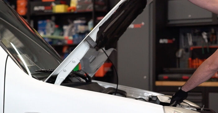 Wie Kraftstofffilter Fiat Doblo Cargo 1.9 JTD 2000 tauschen - Kostenlose PDF- und Videoanleitungen