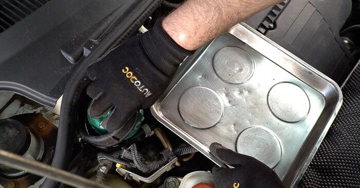 Wie FIAT DOBLO 1.3 JTD 16V 2004 Kraftstofffilter ausbauen - Einfach zu verstehende Anleitungen online