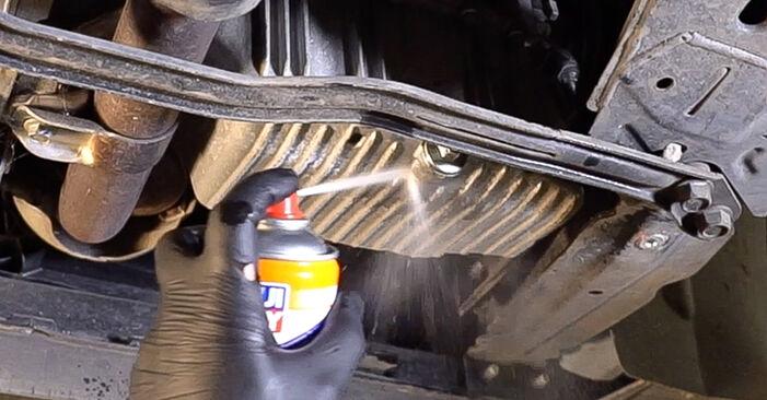 Wechseln Ölfilter am FIAT 500 (312) 0.9 2010 selber