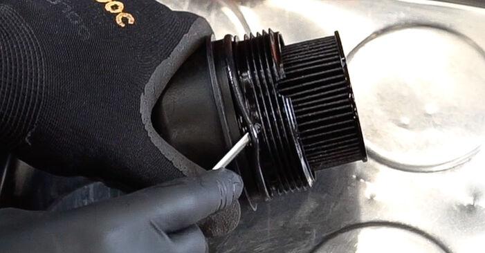 Schritt-für-Schritt-Anleitung zum selbstständigen Wechsel von Fiat Doblo Cargo 2013 1.3 JTD 16V Ölfilter