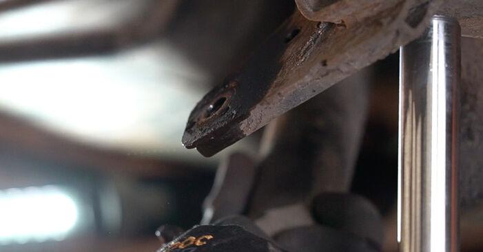 Wie lange benötigt das Auswechseln der Teile: Federn beim Renault Scenic 2 2003 - Detailliertes PDF-Tutorial